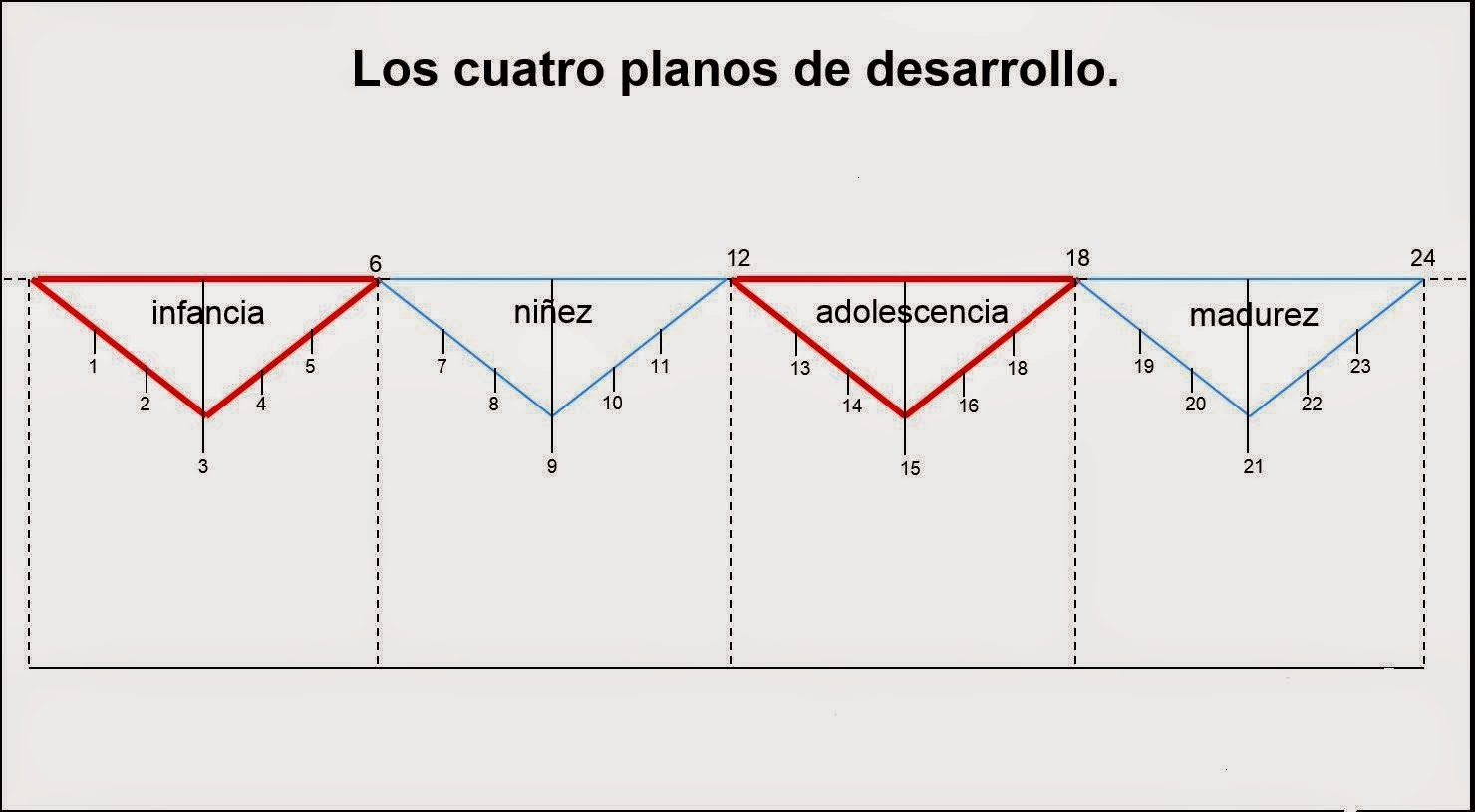 4-planos-de-desarrollo-montessori
