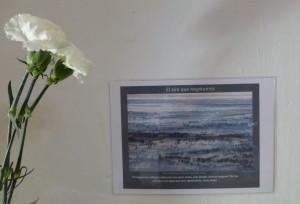 Foto al lado de los claveles que nos servirán para hacer otro experimento de botánica