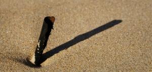 Experimento en el que los niños ponen marcas a la sombra de un palo