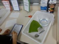 Leyendo y haciendo un experimento